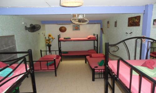 Shanti Lodge photo 24