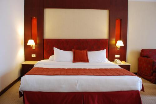 Safir Hotel Cairo - image 7