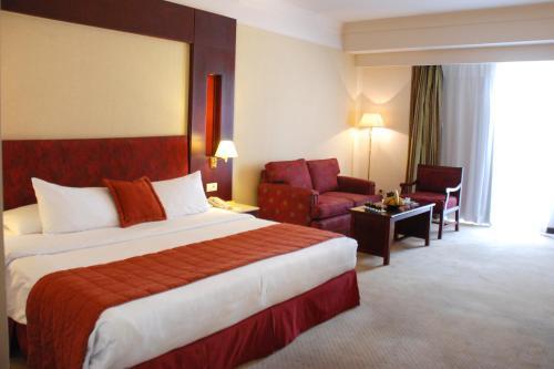 Safir Hotel Cairo - image 8