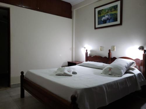 Фото отеля Posada Angelus