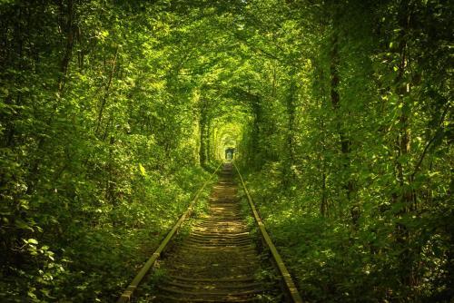 Hotel Tunnel of Love, Rivnens'kyi