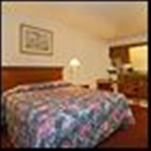 Econo Lodge San Marcos Standard Queen Room - Smoking