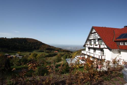 Berghof Grüner Baum - Hotel - Sasbachwalden