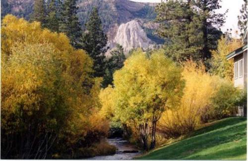628 - Mammoth Lakes, CA 93546