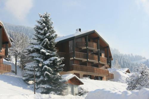 Telemark3 - Apartment - La Chapelle-d'Abondance