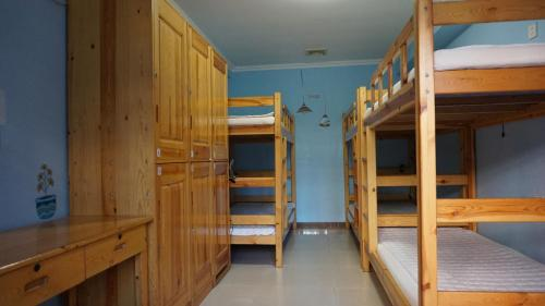 Single Bed in 6-Bed Male Dormitory Room with Shared Bathroom