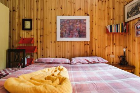 CENTRAL WOODEN CHALET WITH FOREST VIEW - Apartment - Madonna di Campiglio