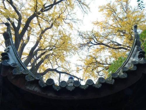 Suzhou Blue Gate Youth Hostel photo 26