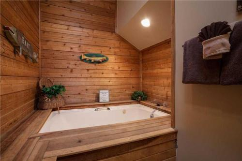 Timber Run 401 - Steamboat Springs, CO 80487