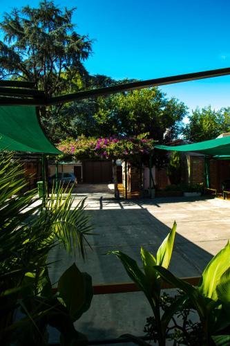 Фото отеля Apart Las Cepas