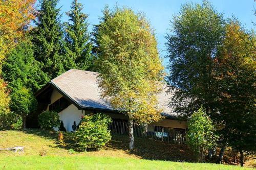 Amadeus Black Forest Mountain Chalet - Todtmoos