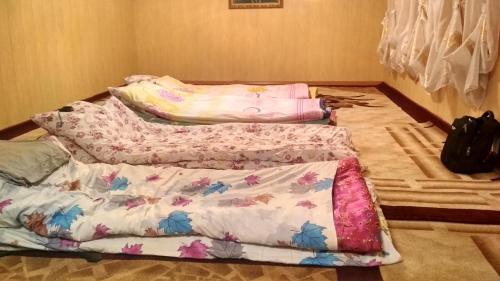 Nomads Guesthouse, Jumgal