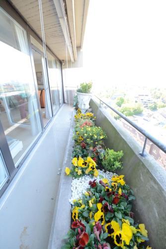 Luxury apartment near trade fair photo 16