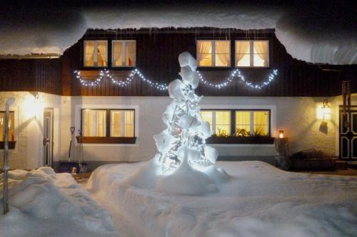 Ferienhaus Eva Deufl - Apartment - Göstling-Hochkar