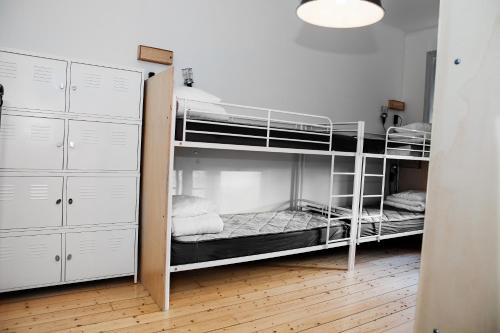 City Backpackers Hostel photo 65