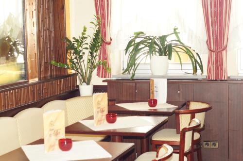 Hotel Alfa Zentrum photo 4