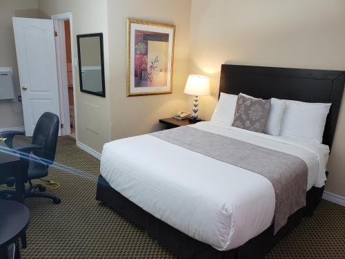 . Regency Inn & Suites