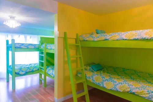 The Big Island Hostel - image 7