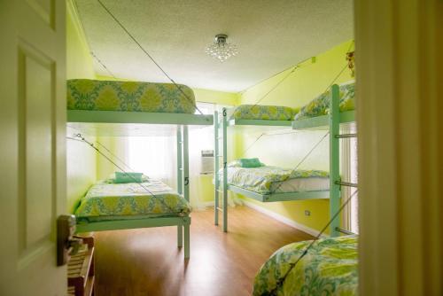 The Big Island Hostel - image 3
