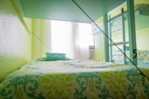 The Big Island Hostel - image 4