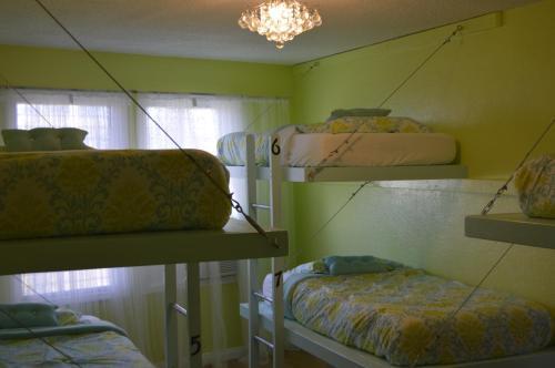 The Big Island Hostel - image 5