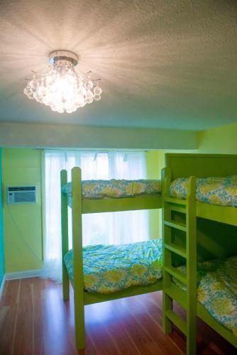 The Big Island Hostel - image 8