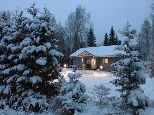 Villa Alexinranta - Nilsiä