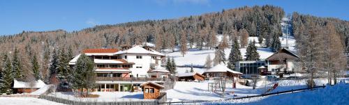 Berghotel zum Zirm - Hotel - Collalbo