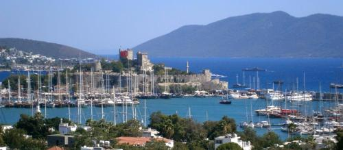 book Bodrum City Central Apartment