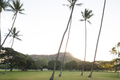 Lotus Honolulu - Honolulu, HI 96815