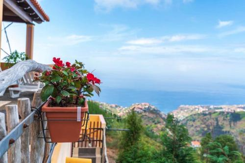 Paradise Cottage With air-condition, central heating & ocean view, Calheta