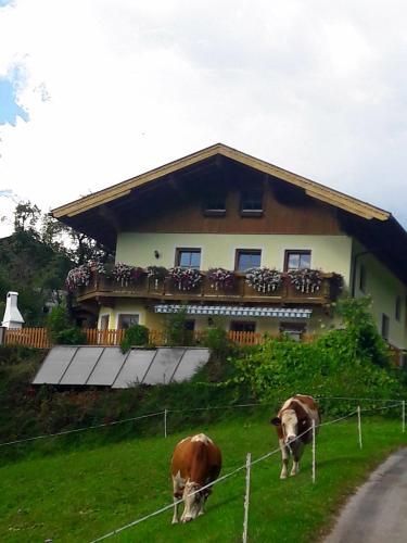 Landhaus Katharina - Apartment - Bischofshofen