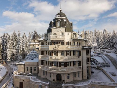 Festa Winter Palace Hotel - Photo 4 of 76
