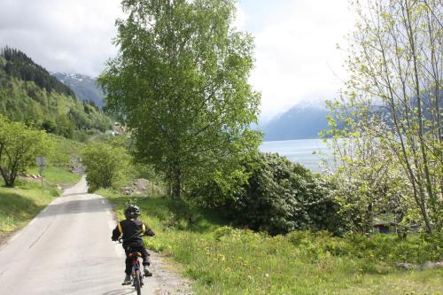 Graaten In Hardangerfjord - Photo 3 of 17