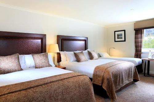 Macdonald Aviemore Hotel picture 1 of 30