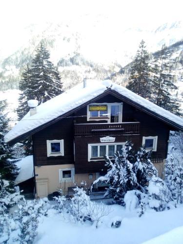 Chalet Alpenhaus Bad Gastein