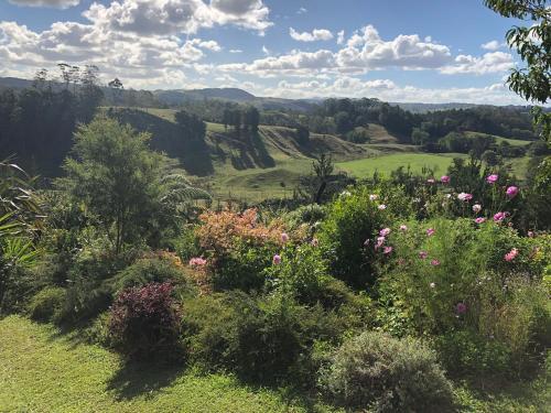 Valley Views - Accommodation - Tauranga