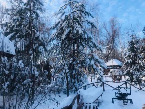 "Pensiune Turistica ""Hanul Lui Vasile"" - Photo 7 of 25"