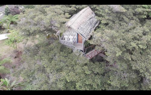 Island Vision Tree Lodge (B&B)