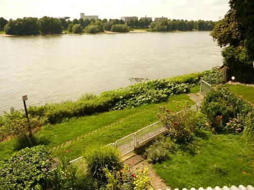 Foto - Rheinblick