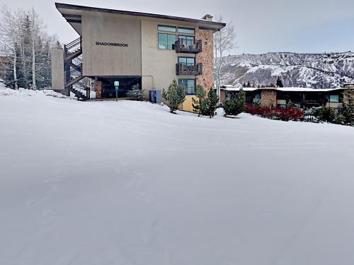 Shadowbrook 301 - Snowmass Village, CO 81611