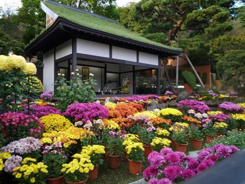 Azumakan - Accommodation - Nihommatsu