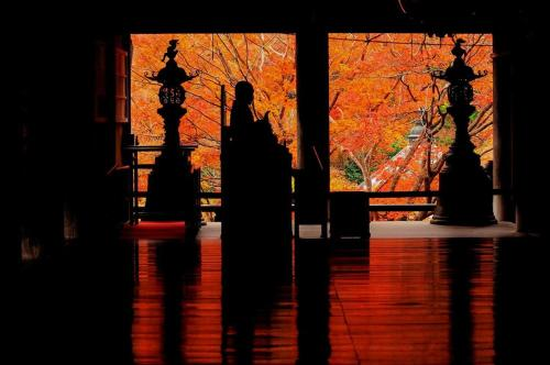 S-CREA Shin Osaka EAST / Vacation STAY 2491, Osaka