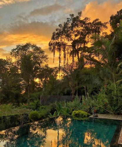 One mile north-east of Catarata de Uvita, Uvita de Osa, Puntarenas Costa Rica.