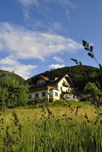 Haus Seebach - Apartment - Lunz am See