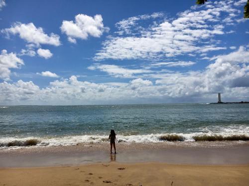 . Concha Tropical Flat