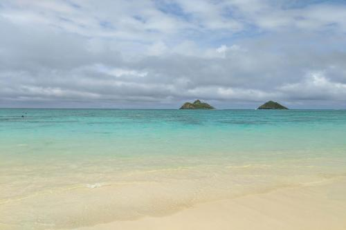 Island Colony Studios - Honolulu, HI 96815