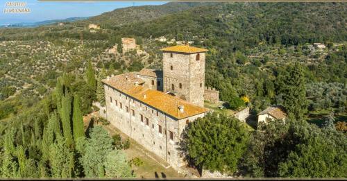 Kasteel-overnachting met je hond in Castello di Mugnana - Mugnana