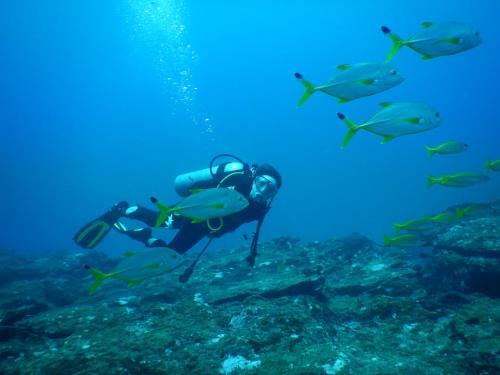 Kalpitiya Diving Center room photos