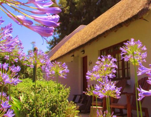 Rosedale Organic Farm Bed And Breakfast